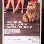 GE Money Bank_Krasensky_Brno Ceska