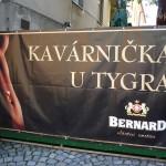 Kavárnička u Tygra_Česká Třebová_Radmila Kučerová